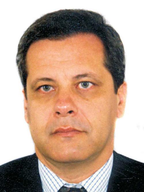 Manuel Alberto M. Ferreira