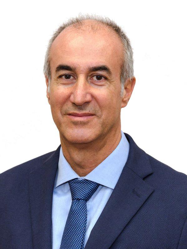 Saúl Neves de Jesus. Autor do livro Psicossociologia das Organizações, das Edições Sílabo.